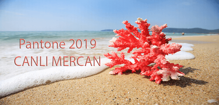 Pantone 2019: Canlı Mercan